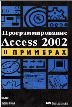 Скачать e-book, книгу Программирование Access 2002 в примерах